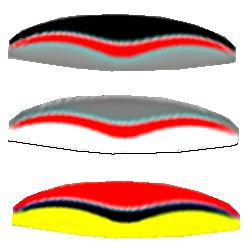 возможные расцветки параплана Arcane